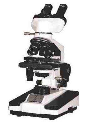 Binocular Microscope (M-113)