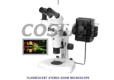 FLUORESCENT STEREO ZOOM MICROSCOPE