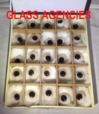 Black Artificial Eye   Box Of 25 Pieces