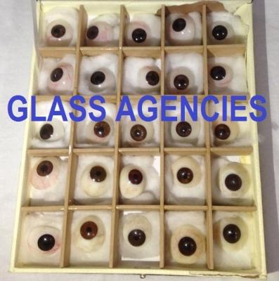 Brown Eye Artificial   Box Of 25 Pieces