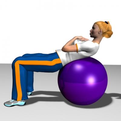 Exercise Ball Aaram