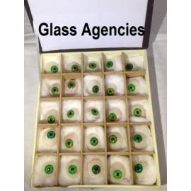 Green Prosthetic Eye   Box Of 25 Pieces